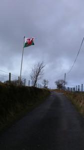 Banner Cymru yn chwifio yn y gwynt yn Nhrisant y bore yma. Welsh Flag flying high in Trisant this morning